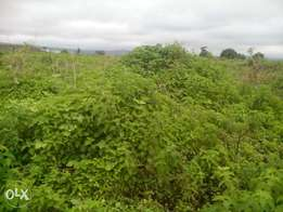 5 Plots Of Lands By Army Barracks Kurudu phase 5