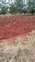 1 acre at mMungetho, Maragua ridge. 100 mtrs from mbombo- samaki rd