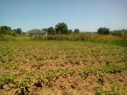 Land dealers in acholi sub region
