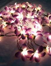 Ball shape string lights and flower fairy lights Upper Parklands - image 3