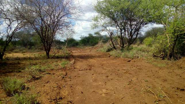 66 acres for sale past Ikutha town Kitui county Kalivu - image 4