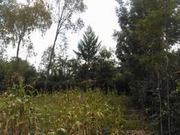 1/8 or 1/4 Acre Plot On Masai Lodge Kandisi Road