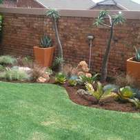 Instant Lawn installation and Garden Services? Call us