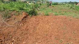 Land for sell with its land tittle ready at Kira Jomayi nsasa