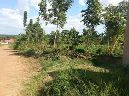 Land at 25m Ug shs on Matuga-Kasangati road mailo land and title.