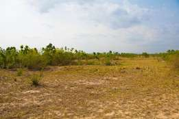 Afienya Odumse land at Teachers Housing project 4 sale