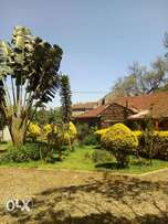 To let standalone at lavington area for office is going 200k per mont
