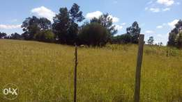 1 acre Plot For Sale Kiplombe- Eldoret