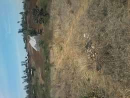 3/4 acres at makuyu. 5.5km off tarmac.