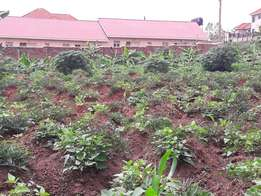 A Strategically located plot of 100x100fts for sale at 80m in Kireka