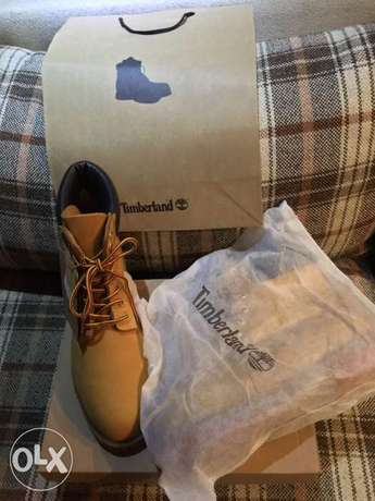 timberland with the box