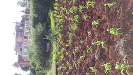 40x80 plot with title is on sale in Ruaka