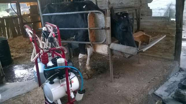 Milking Machine Komarock - image 2