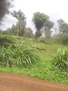 Sale of aquarter piece of land at MUGOYA 200m from the station Embu Town - image 2