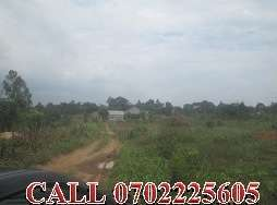 Appetising 50 by 100ft plot for sale in Namugongo-Kasayi at 8m
