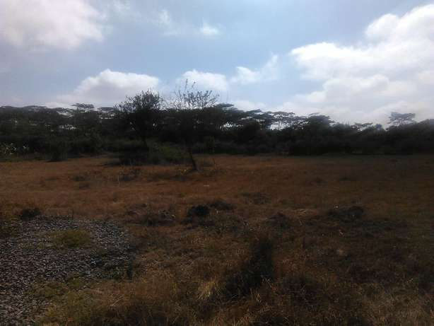 Very prime Half Acre Parcel of Land near Bomas of Kenya Hurlingham - image 2