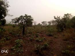 LAND FOR SALE at affordable prices.