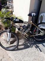 Motorised mountain bike for sale
