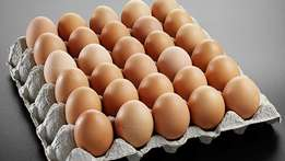 Tray eggs for sale R35 Free delivery