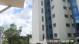 A 2 bed apartment for rent in Westlands