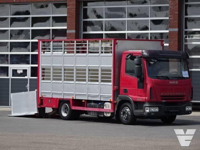 Iveco Eurocargo 90E18 1 stock livestock - 2007