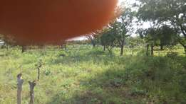 One plot of land for sale beside Iqra College, Islamic Village, Ilorin