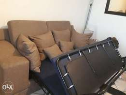 Stylish Pull out sleeper couch