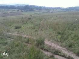 80 acres for sale-Ngorika
