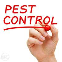 Fumigation and Pest Xontrol Services