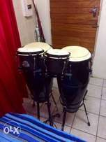 Pearl congas and bobgo's