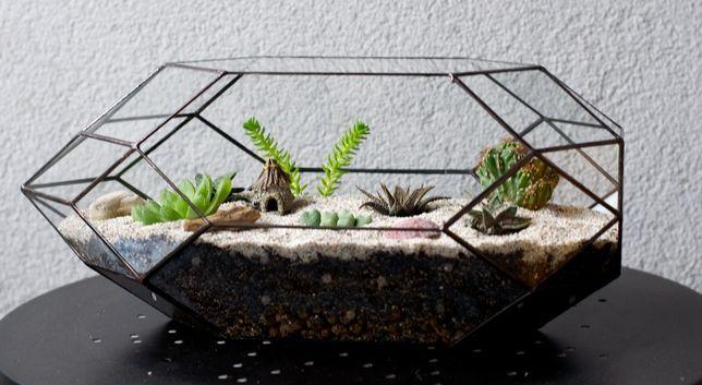 Szklana Doniczka Terrarium Dla Sukulentów I Innych Roślin
