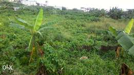 9 plots of land with CofO on Lagos/Ibadan express road