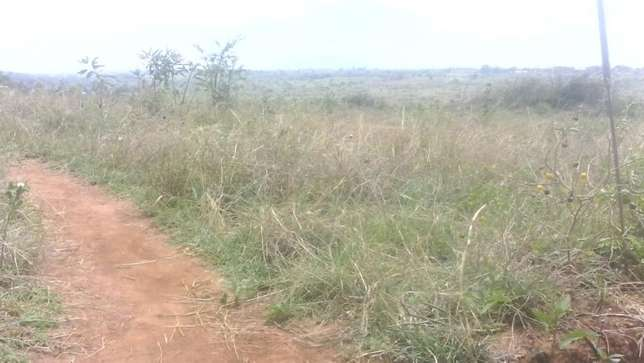 Gilgil plots on a special Easter offer Thika - image 1