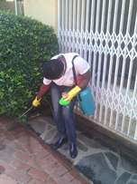 Cleaning Services and Pest Control