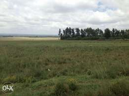 Plots for sale in Elementaita, Nakuru.