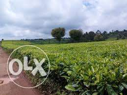 6 acres in githunguri for sale 9m
