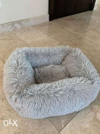 cat bed for sale
