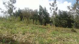 karura wangunyu 1 acre at 10m