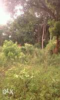 200 acres in Kyankwanzi off the main road