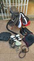 Horse saddle and bridle with accessories