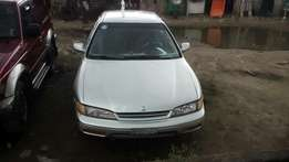 Honda accord bull dog available for sell