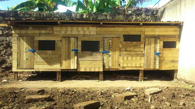 Exclusive spacious kennel or chicken house negotiable Nairobi CBD - image 4