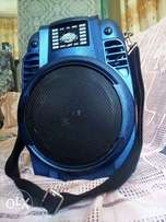 Portable digital speaker