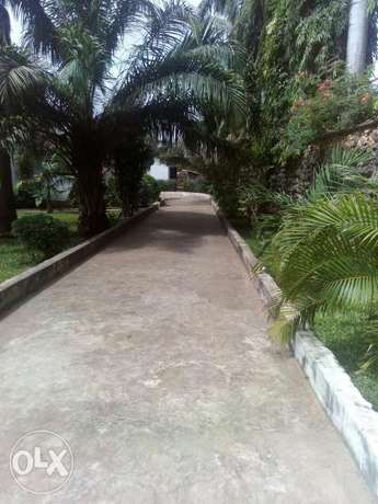 A luxurious 4bdrm mansionate on a half acres Land for sell nyali MSA Nyali - image 4