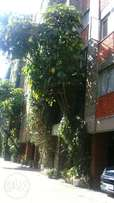 Two Bedroom for rent in Kilimani