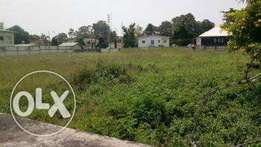 Acres of land for sale at Conqueror Estate, Agbara & Badagry N500k