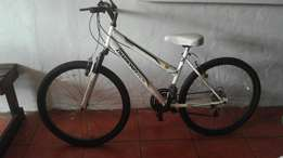 Sumsang Diamond mountain bike