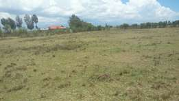 1 acre in Nanyuki, Sweetwaters at 900k