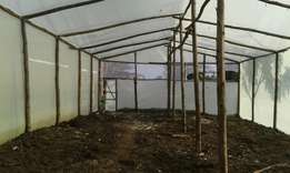 wooden Greenhouse construction drip installation and planting.