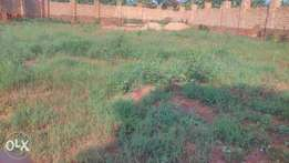 Residental Plot for sale 36decimals fanced with gate located at nkumba